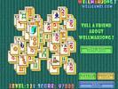 Well Mahjong 2 Internet Community